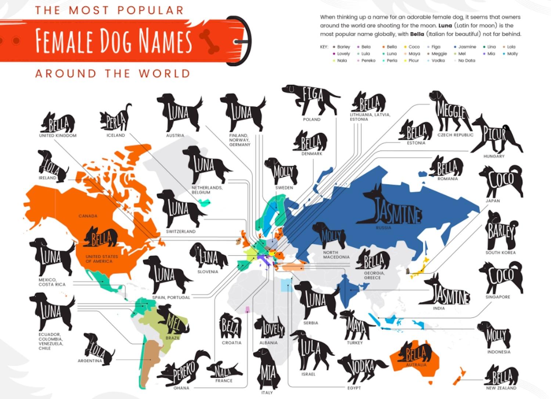 dog names canada