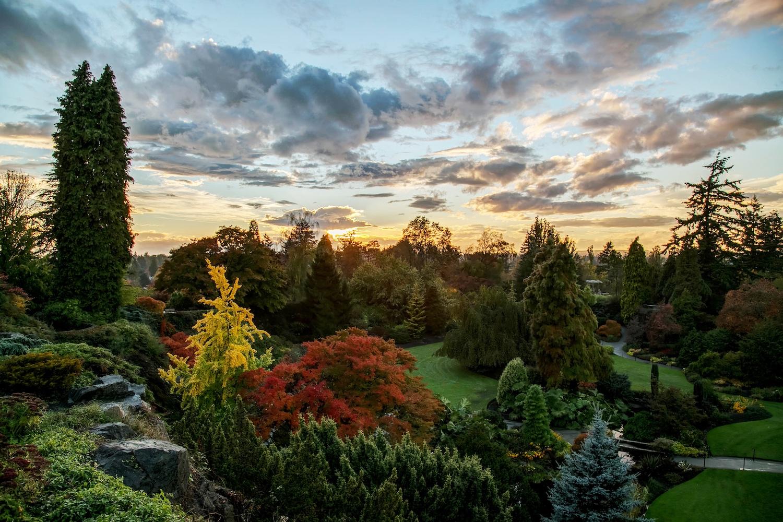 fall colours vancouver