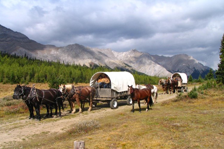 country trips near calgary