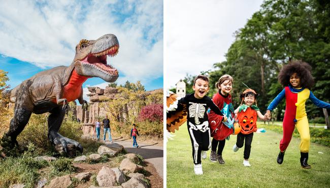 calgary zoo fall halloween