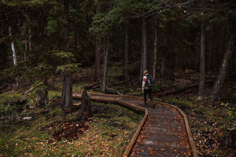 hiking fall