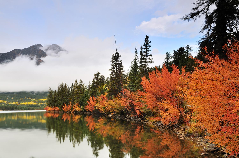 fall colours jasper pyramid lakes